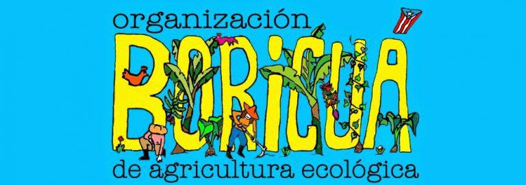 logo boricua fixed